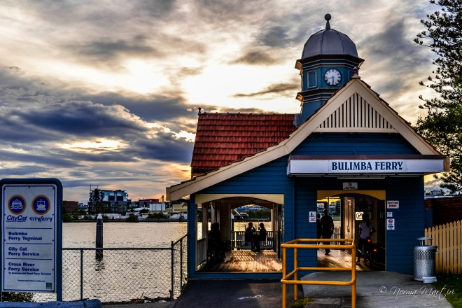 Bulimba Ferry 2013