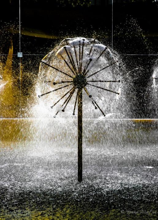 Dandelion Fountain 1 (1)